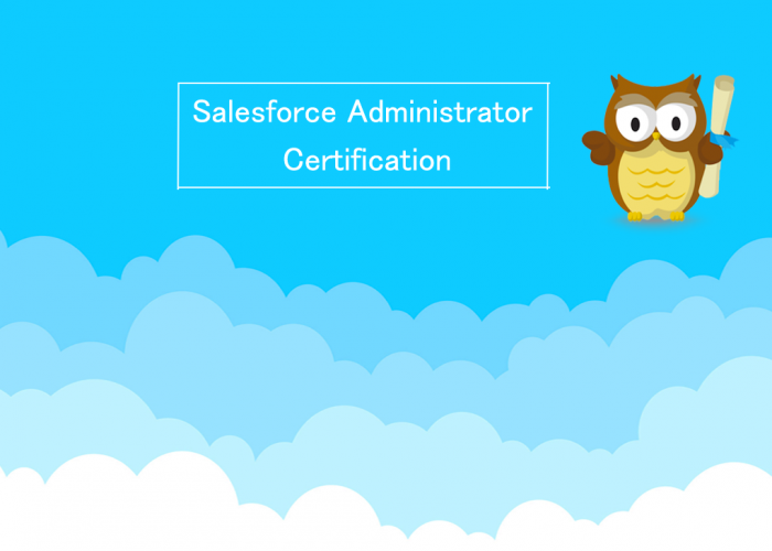 Getting certified - Salesforce Administrator Certification