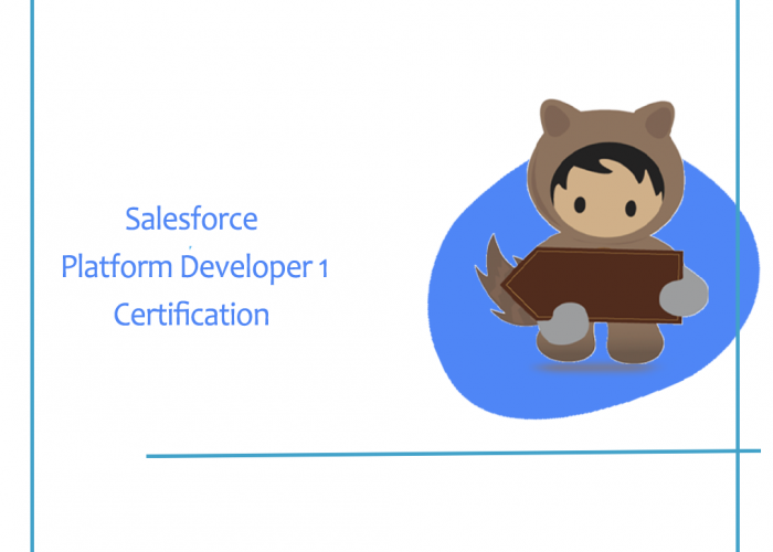 salesforce platform developer one certification
